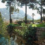 2007 Capri - Giardini di Augusto