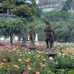 2005_Rose garden - Residentz palace Bamberg