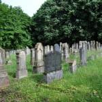 2012_Cimitirul israelit - Buttenstein